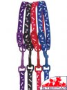 Beaupets Puppy Collar & Lead Set Paws/Bones Blue