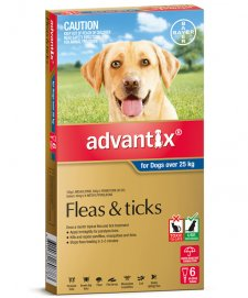 Advantix Dog Over 25Kg Xlarge Grey 6Pack
