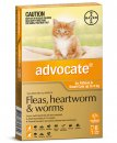 Advocate Cat Upto 4Kg Small Orange 6Pack