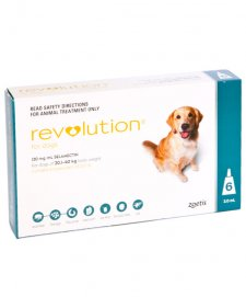 Revolution Dog 20-40Kg Xlarge Green 6Pk + Bonus Canex