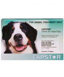 Capstar for Dogs 11-57Kg 6Tabs
