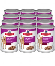 Hills Science Diet Dog Wet 12X370G Case Beef
