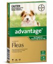 Advantage Dog 0-4Kg Small Green 4Pack